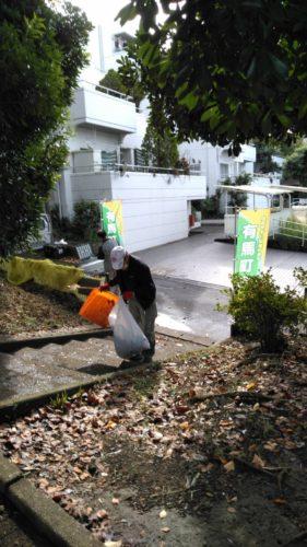 つつじ公園清掃2